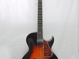 The Loar 650 VS
