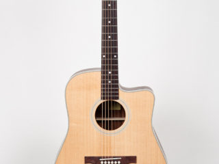 Eastman AC220 CE ON HOLD