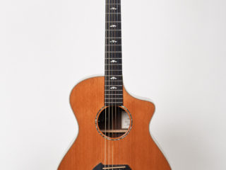 Breedlove Performance Focus