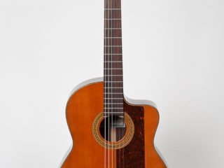 New World Studio 650-C $ 985