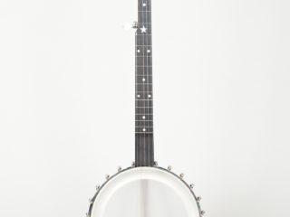 Bart Reiter Open-back Banjo Used Sold